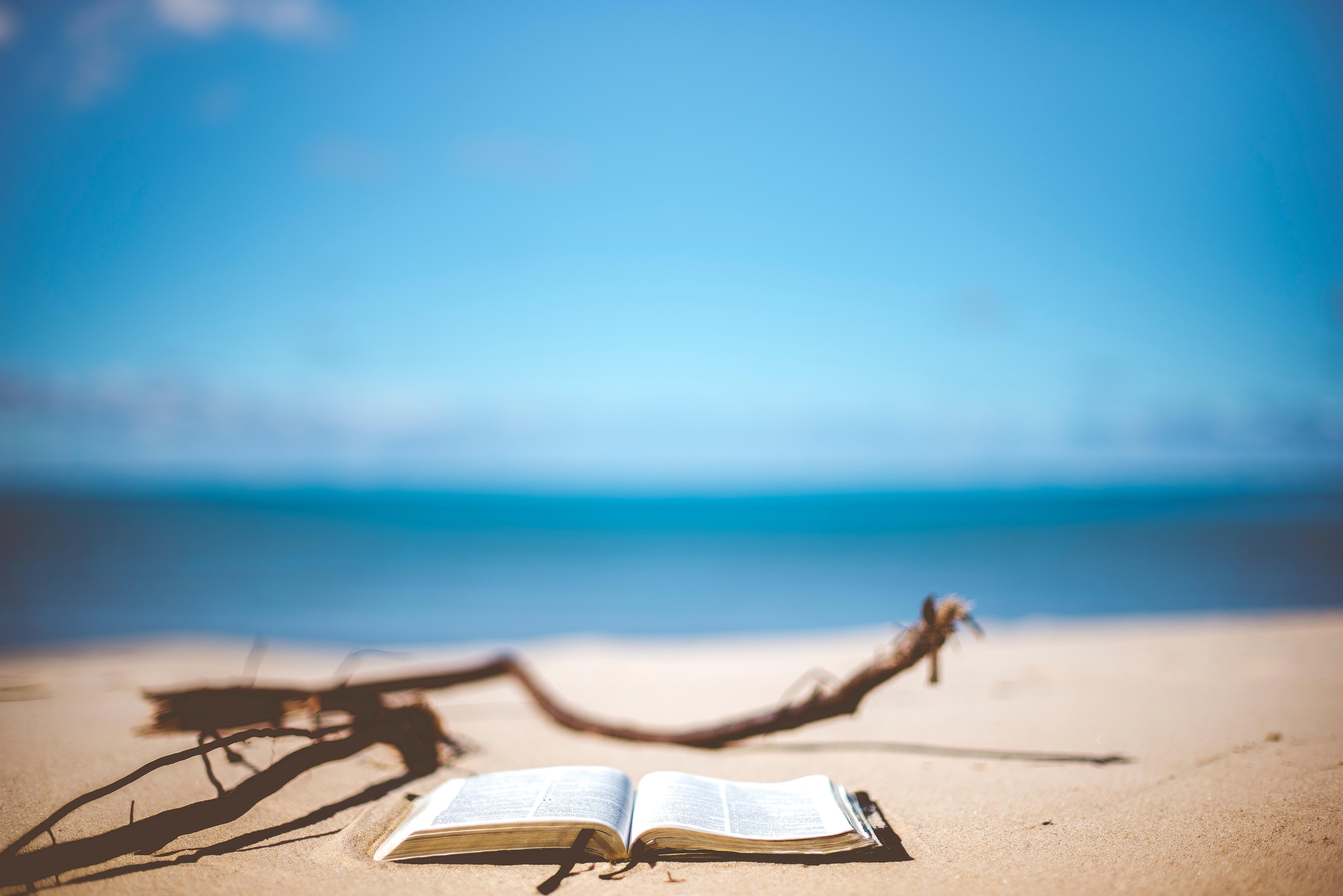 czytanie_koniec